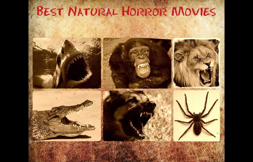 Οι 25 (+5) Καλύτερες Ταινίες Τρόμου Με Φονικά Ζώα