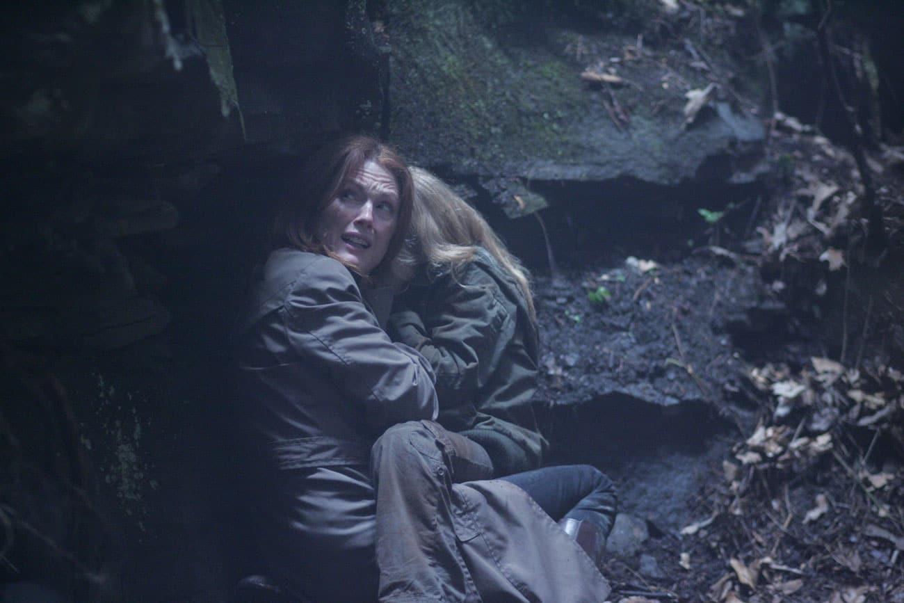 shelter Julianne Moore