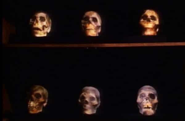 anniversary dinner skulls children