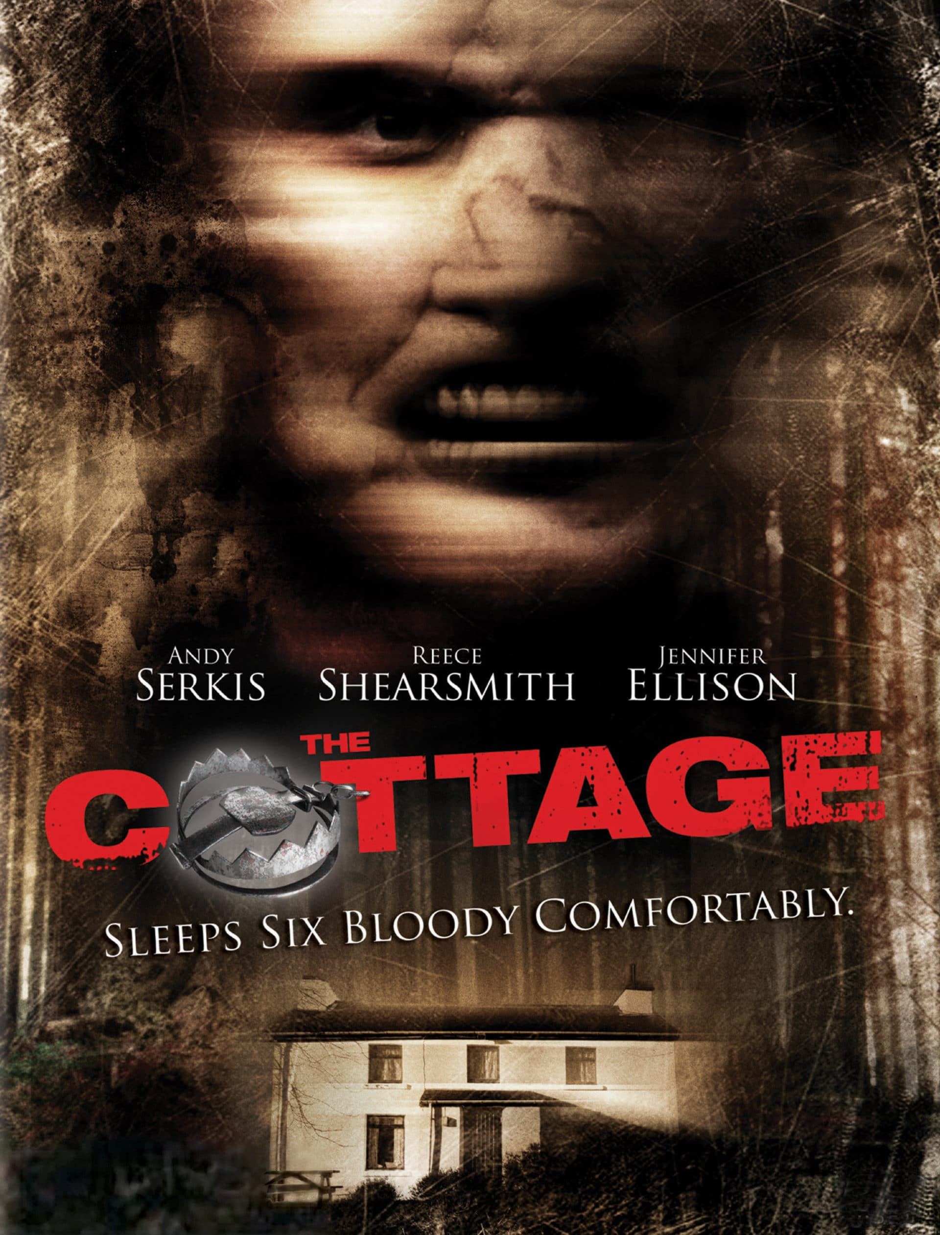 the cottage 2008 poster